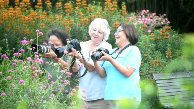 stockvideo's en b-roll-footage met drie hogere vrouwen in park dat aard fotografeert - sunny