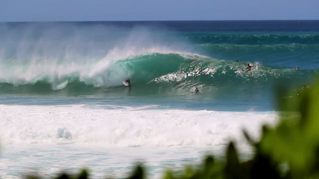 vídeos de stock, filmes e b-roll de three sets of waves forming on a blue ocean with surfers paddling out - pipeline wave