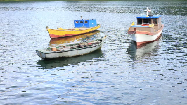 ms three small colorful fishing boats anchored / puerto montt, region de los lagos, chile - anchored stock videos & royalty-free footage