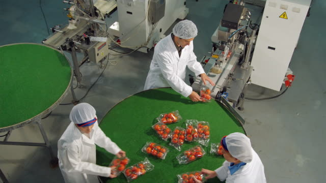 ws ha three technicians in protective clothing working on rotating sorting table in food processing plant / algarrobo, malaga, spain - wrapped stock videos & royalty-free footage