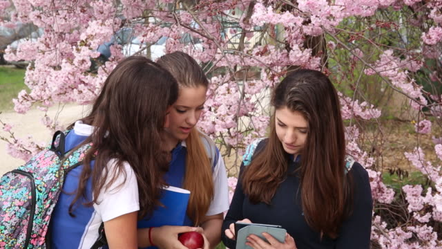 three teen girls in school uniform share information on digit tablet - piedmont italy stock videos & royalty-free footage