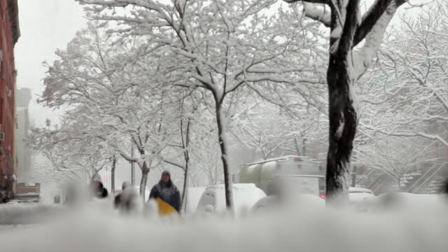 MS SELECTIVE FOCUS Three teenage boys with sleds walking down tree lined snow covered street / New York City, New York, USA