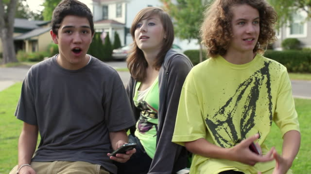 MS Three teenagers (14-15, 16-17) sitting in park, talking and texting / Cazenovia, New York, USA