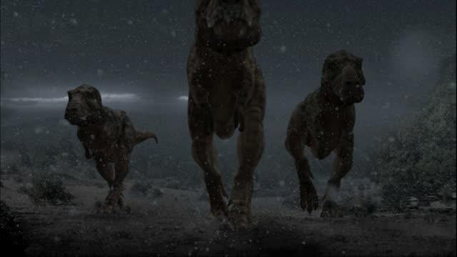 cgi, ms, la, three tyrannosaurus rexes walking in falling volcanic ash, ground view - tyrannosaurus rex stock videos and b-roll footage