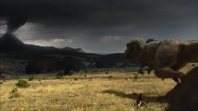 cgi, cu, three tyrannosaurus rexes walking in field, sky covered with volcanic smoke - tyrannosaurus rex stock videos and b-roll footage