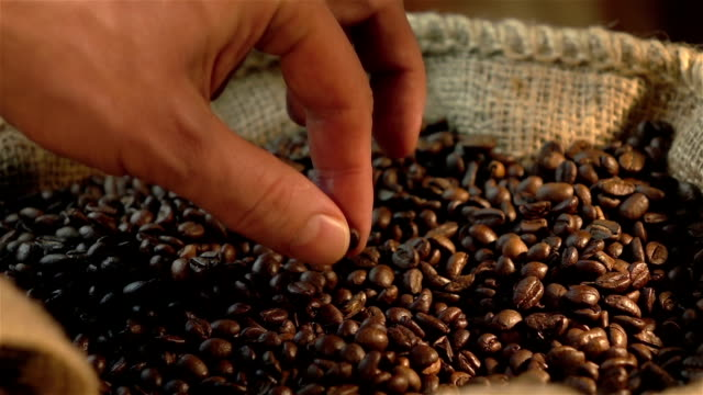 Three videos of checking coffee beans in real slow motion