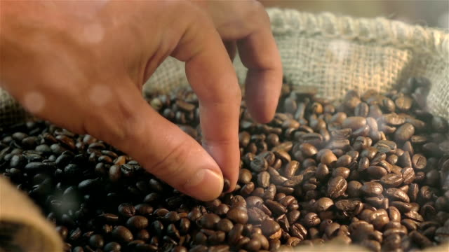 three videos of taking coffee bean in real slow motion - bean stock videos and b-roll footage