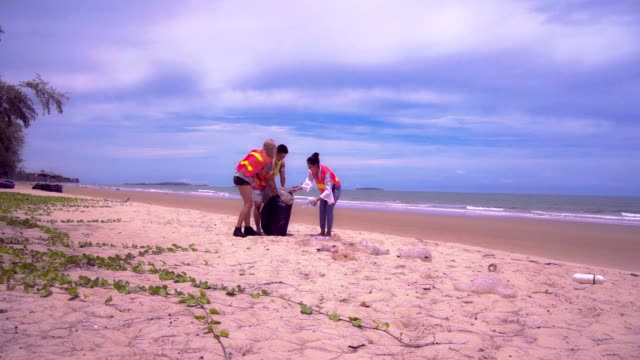 three volunteers do csr garbage collection at beach . - altruism stock videos & royalty-free footage