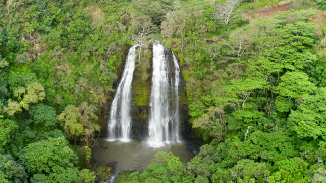 three waterfalls in hawaii tropical forest - isola di kauai video stock e b–roll