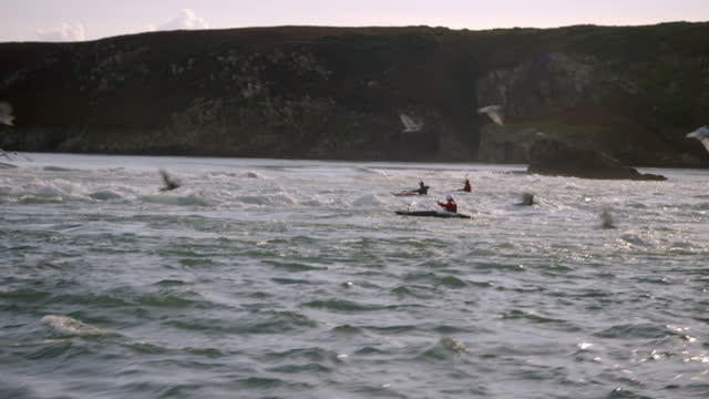 three white water kayakers on the sea - oar stock videos & royalty-free footage
