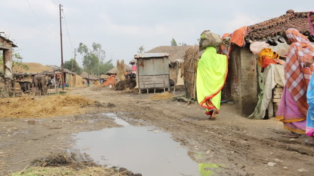 ws pan of three women in colourful saris who are walking along a muddy dirt road in a village with several shacks with thatched roofs near birgunj a... - strohdach stock-videos und b-roll-filmmaterial