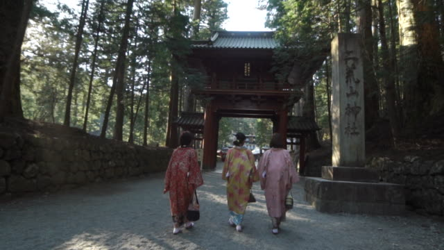 three women in kimonos walk through forest - 3人点の映像素材/bロール