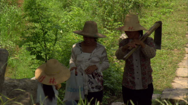 vidéos et rushes de ms three women wearing sun hats, one carrying hoes, guilin, guangxi zhuang autonomous region, china - cadrage aux genoux