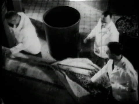 1936 b/w three workers brewing beer at anheuser busch brewery in st. louis / missouri, united states  - anheuser busch brewery missouri stock videos and b-roll footage