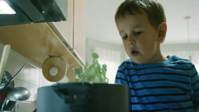 a three year-old caucasian boy acts silly and talks while pointing to a steaming pot that is sitting on a stove top range in a kitchen - danger stock videos & royalty-free footage