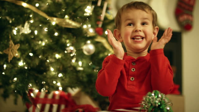 a three year-old caucasian boy in a red shirt laughs, smiles, and claps while holding a christmas present in front of a christmas tree on christmas day - estatico video stock e b–roll
