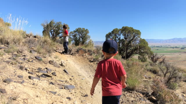 a three year-old caucasian boy runs to catch up with his five year-old caucasian brother while hiking in a high desert landscape in colorado on a sunny day - colorado stock videos & royalty-free footage