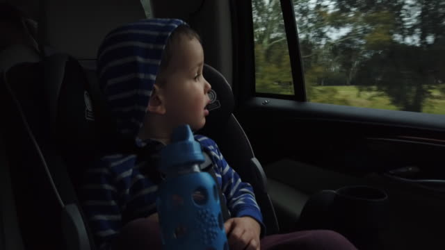 a three year-old caucasian boy wearing a hoodie sits in his carseat and looks out the window of a moving vehicle - learning to drive stock videos & royalty-free footage