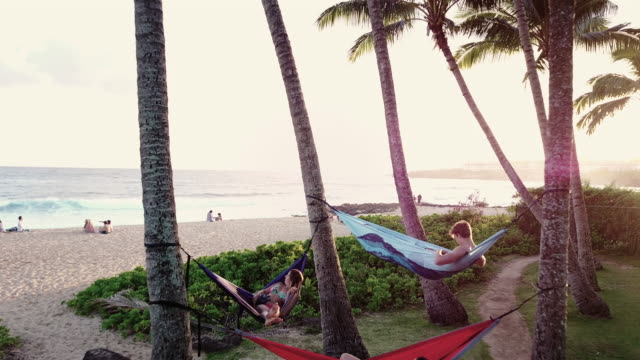 three young adults relaxing in hammocks next to the beach - hammock stock videos & royalty-free footage