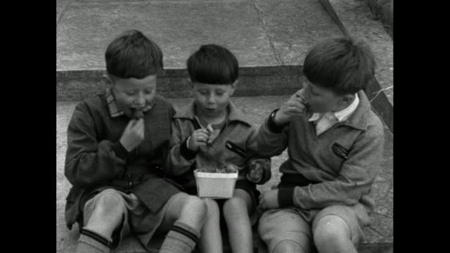three young boys eating strawberries; 1956 - trug stock videos & royalty-free footage
