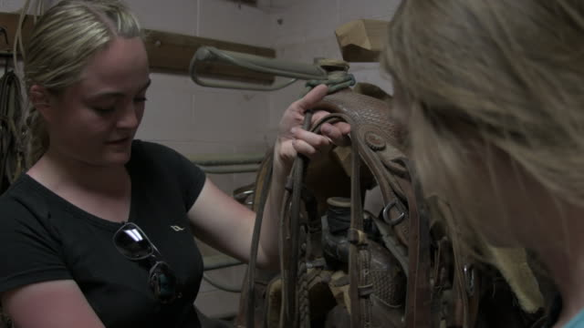 three young women talk through parts of a horse bridle - bridle stock videos & royalty-free footage