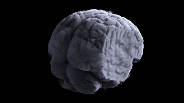 stockvideo's en b-roll-footage met three-dimensional visualization of the mri of the brain. modern magnetic resonance imaging is, in fact, one of the options for radiosurgery. the medicine of the future allows you to reliably get information about the state of all organs and systems. - biologie