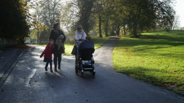 three-gen family at a park - holding hands stock videos & royalty-free footage