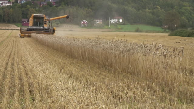 threshing machine - threshing stock videos & royalty-free footage