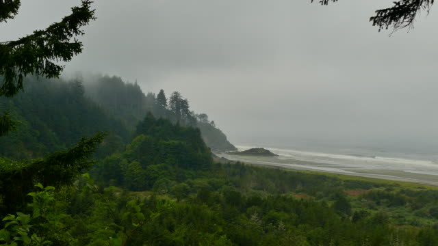 4k - through fog panorama of washington coast high angle view of wide sandy beach and surf - brandungsfischen stock-videos und b-roll-filmmaterial