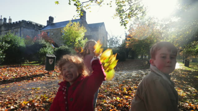 throwing leaves at the camera - autumn stock videos & royalty-free footage