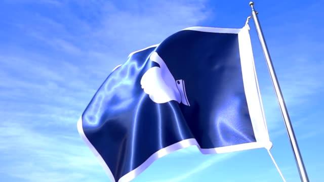 Thumb Up Flag