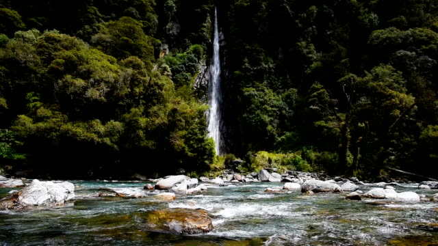 Thunder Creek falls Waterfalls and blue creek with green rainforest in west coast in New zealand , Slow motion