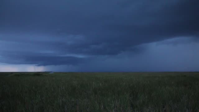 thunder storm on the everglades national park - dramatic sky stock videos & royalty-free footage