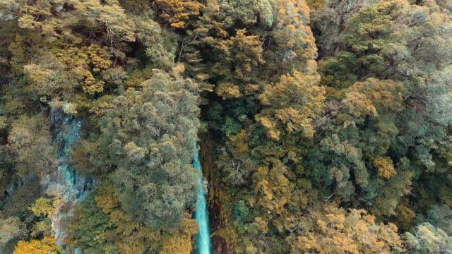 donner wasserfall, neuseeland - länge stock-videos und b-roll-filmmaterial