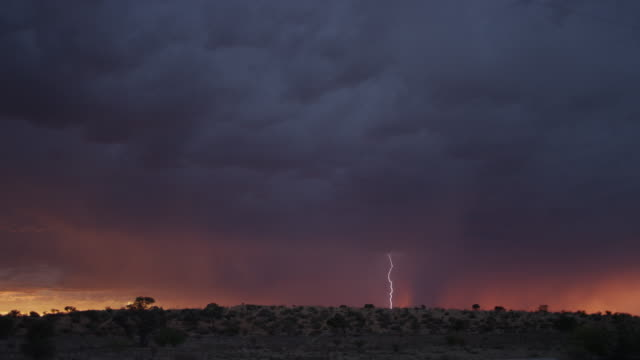 ws thunderstorm over south african desert - shower stock videos & royalty-free footage