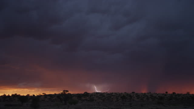 ws thunderstorm over south african desert - thunderstorm stock videos & royalty-free footage
