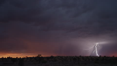 ws thunderstorm over south african desert - lightning stock videos & royalty-free footage