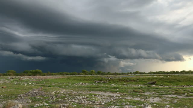 thunderstorm - thunderstorm stock videos & royalty-free footage
