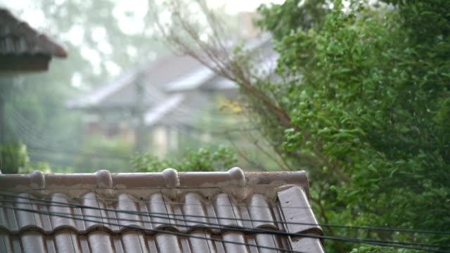 vídeos y material grabado en eventos de stock de tormentas en tailandia. - jardin