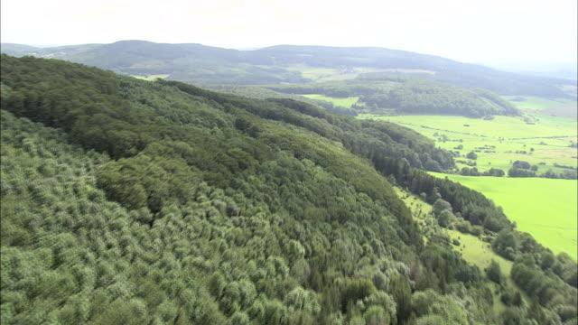 thuringian forest - turingia video stock e b–roll