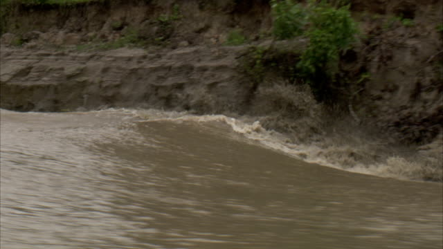 A tidal bore rages along the muddy banks of a river. Available in HD.