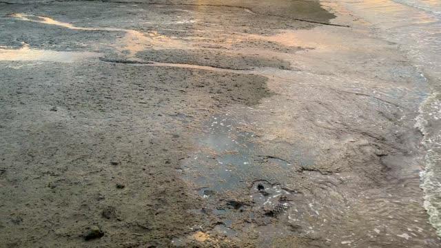 tidal mud flats along brisbane river - tide stock videos & royalty-free footage