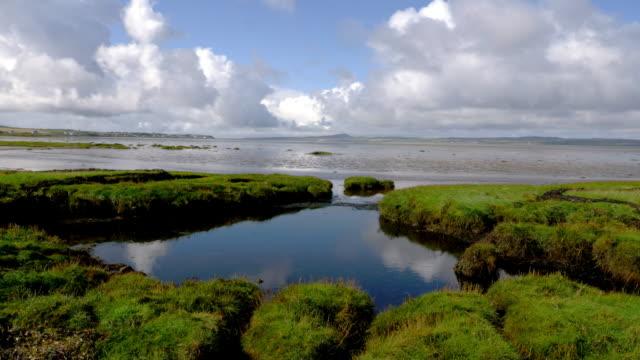 tidal pool near port ellen - tidal pool stock videos and b-roll footage