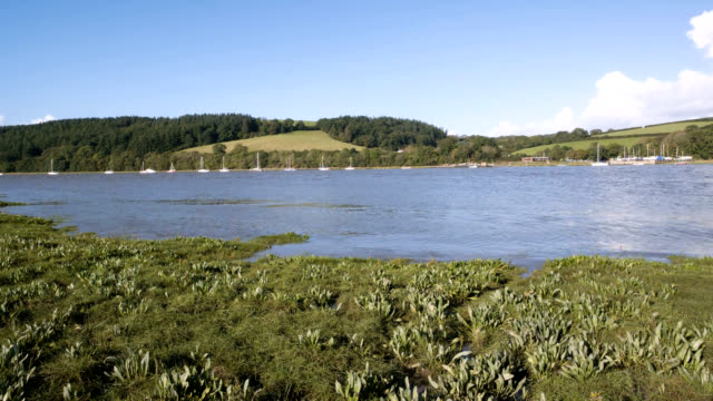 """""""tide going out, timelapse"""" - estuary stock videos & royalty-free footage"""