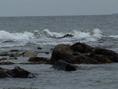 stockvideo's en b-roll-footage met tide in, rocks, waves breaking, overcast - whitley bay