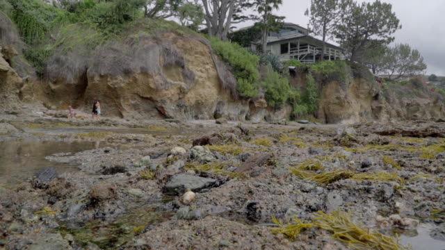 tide pools dolly - laguna beach california stock-videos und b-roll-filmmaterial