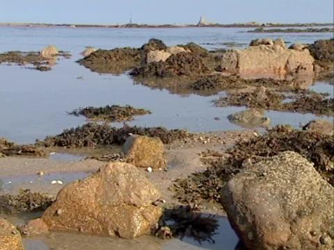 vídeos de stock e filmes b-roll de ms tide retreating - time lapse. channel islands, uk - ilhas do canal da mancha