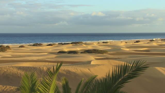 WS ZI Tide rolling ashore near sand dunes on beach / Maspalomas, Gran Canaria, Spain