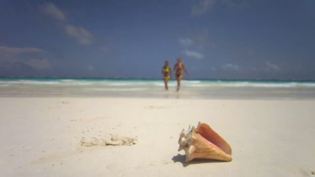 SM WS Tide rolling in on shore with conch shell in foreground as two women walk toward camera/ Tulum, Mexico