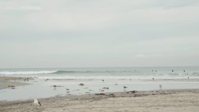 Tides Crash at the La Jolla Beach coastline